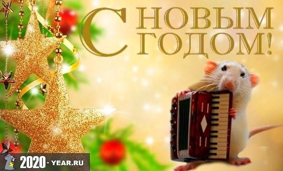 картинки праздника новый год крысы 016