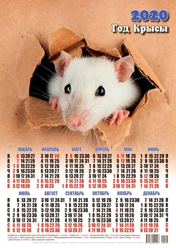 картинки праздника новый год крысы 023