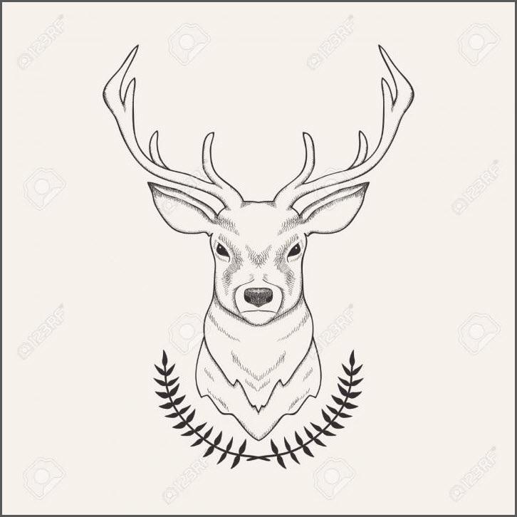 картинки с оленями для срисовки 008