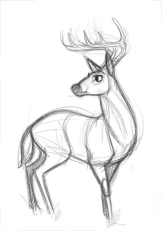 картинки с оленями для срисовки 009