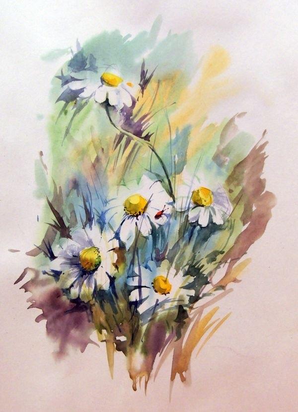 слабо цветы ромашки картинки акварель привести здоровое