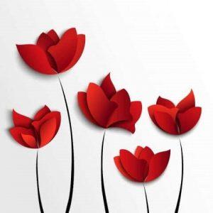 квіти на білому фоні 023