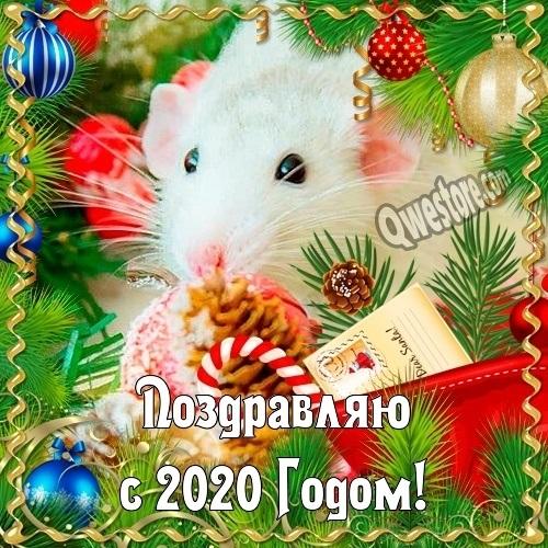 красивая открытка на новый год 2020 021