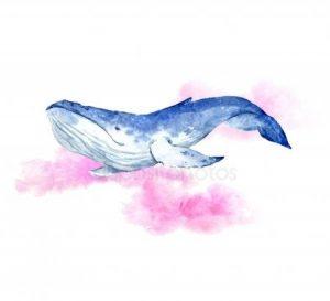 нарисованный кит 023