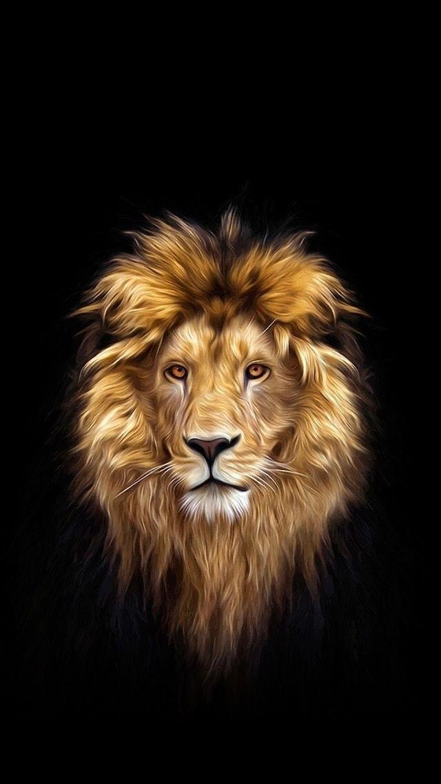 обои льва на айфон 6 008