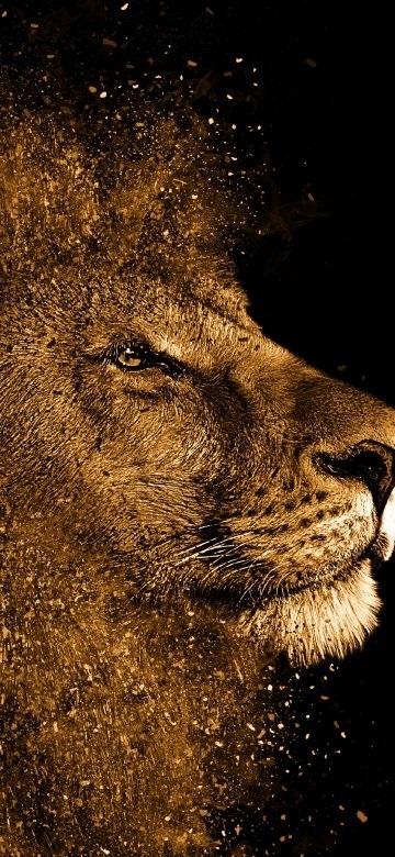 обои льва на айфон 6 011
