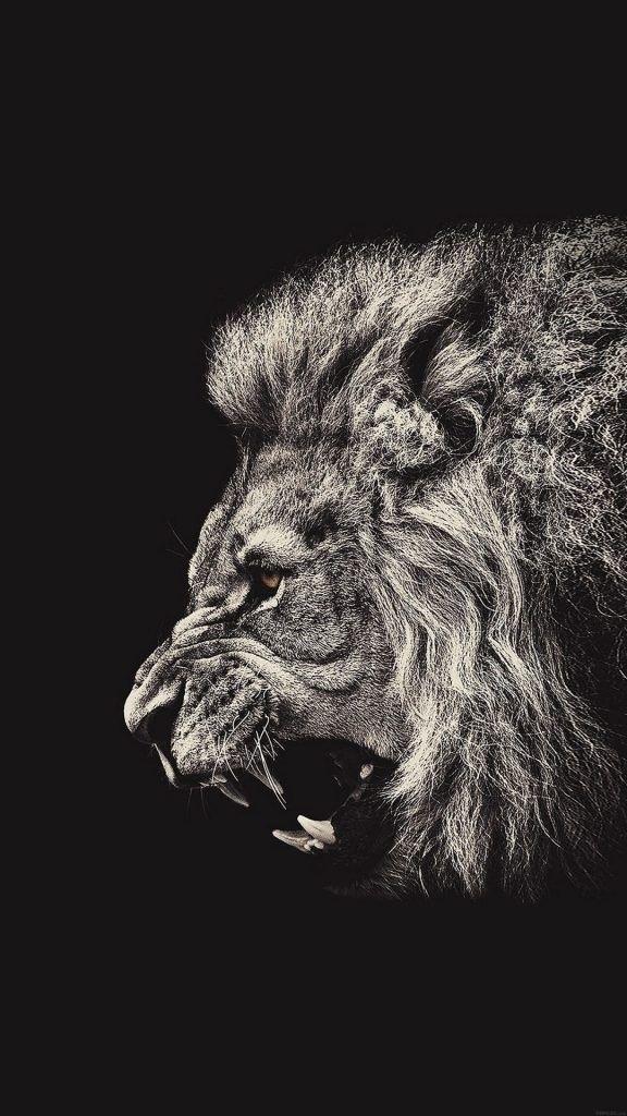 обои льва на айфон 6 013