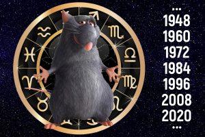 открыта на год крысы 024