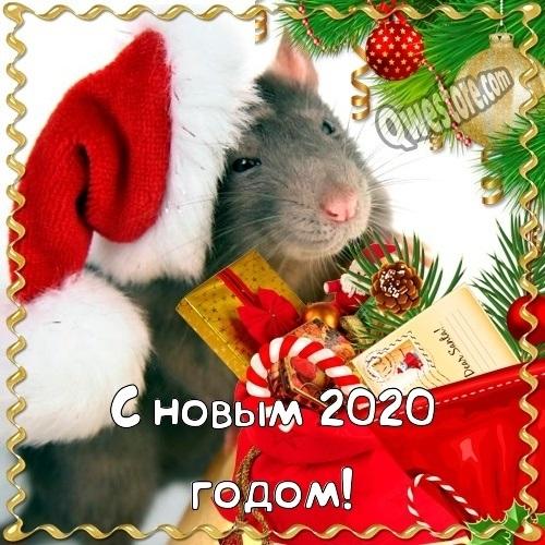 открытки поздравления с новым 2020 годом 008