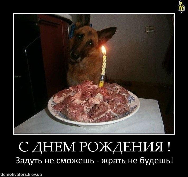 прикольные мотиваторы с днем рождения 020