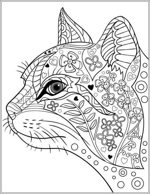 Раскраски кошки - замечательные фотки