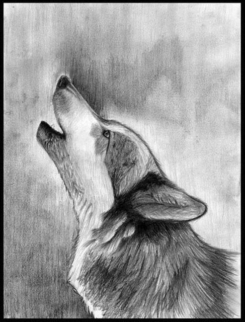 рисунок на свободную тему карандашом 5 класс 021