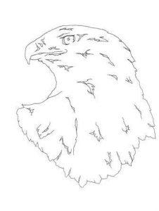 рисунок орла для выжигания 022