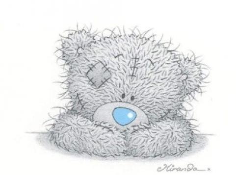 серый мишка тедди 001