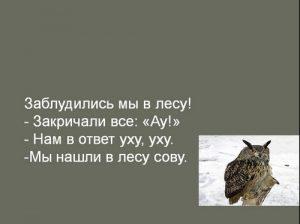 совушка беспальков 020