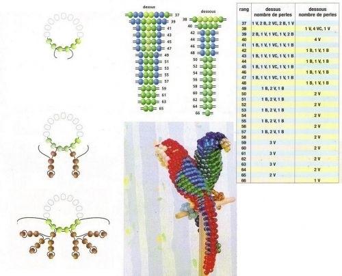схема попугая из бисера 003