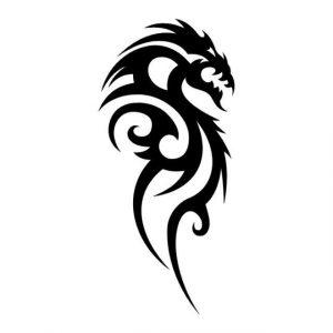 тату эскиз кельтский дракон 024