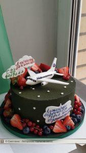 фото торты с самолетом 023