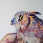 Цветная картинка совы — четкие картинки