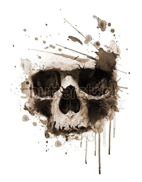 череп принт 014