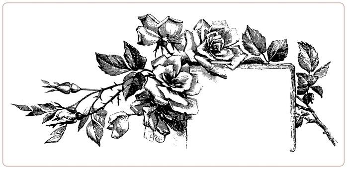 черно белые розы для декупажа 007