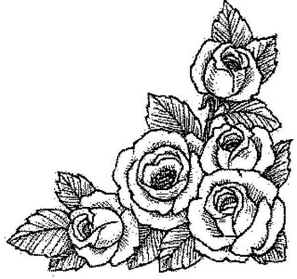 черно белые розы для декупажа 015