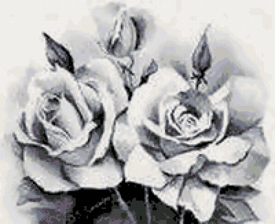 черно белые розы для декупажа 017