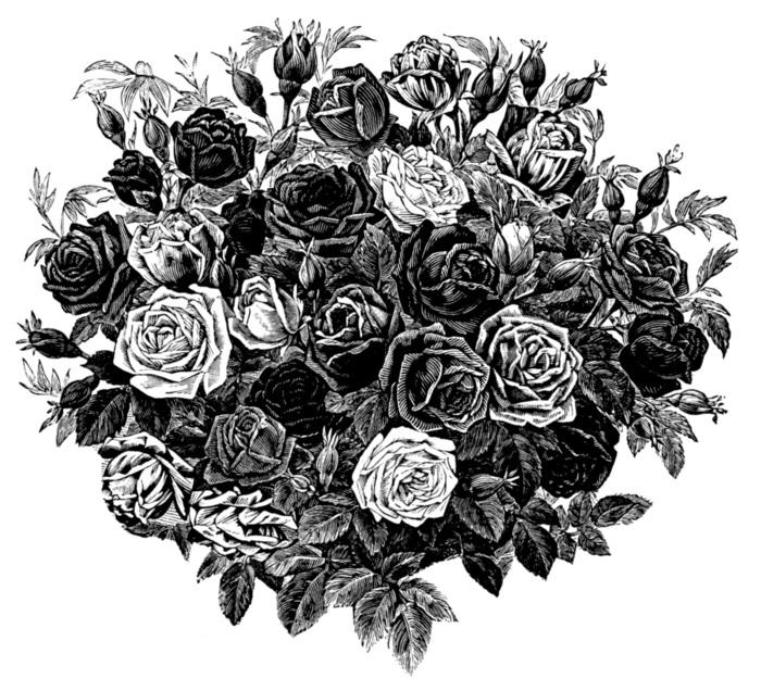 черно белые розы для декупажа 018