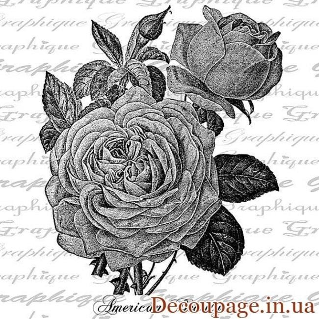 черно белые розы для декупажа 019