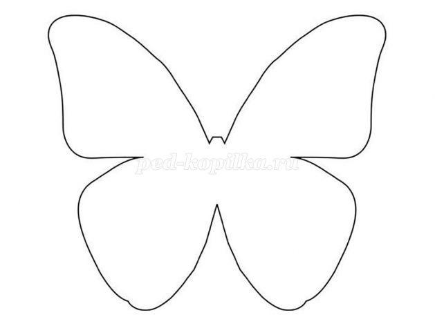 шаблоны бабочки для скрапбукинга 019