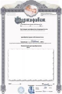 шаблон шуточный сертификат 019