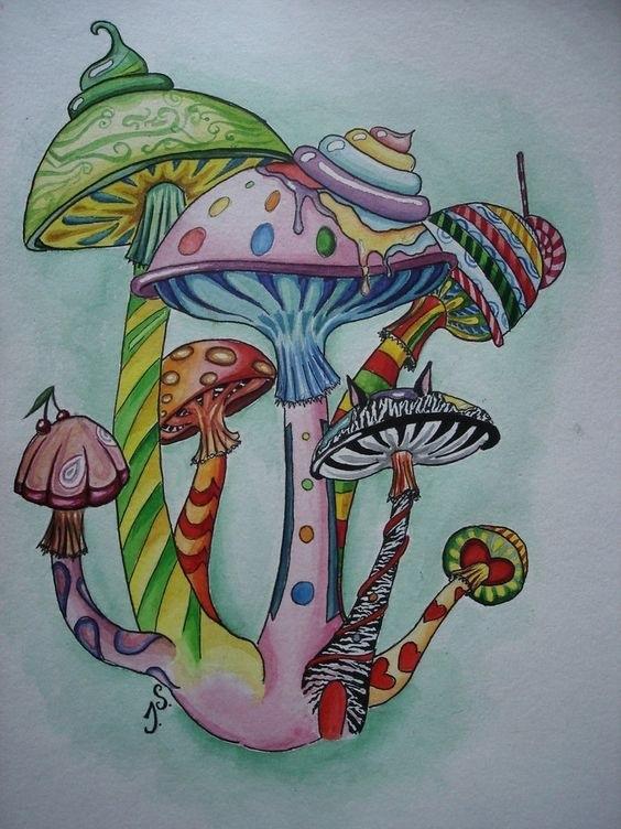 эскизы грибов 005