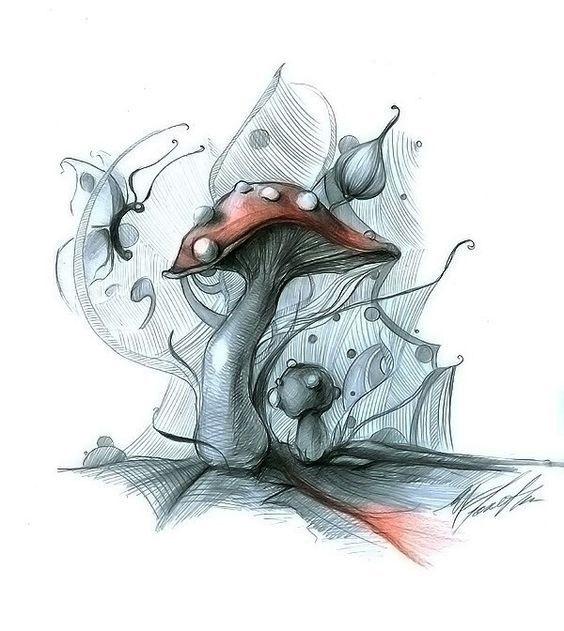 эскизы грибов 013