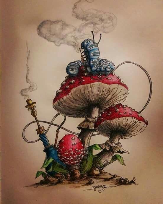 эскизы грибов 018