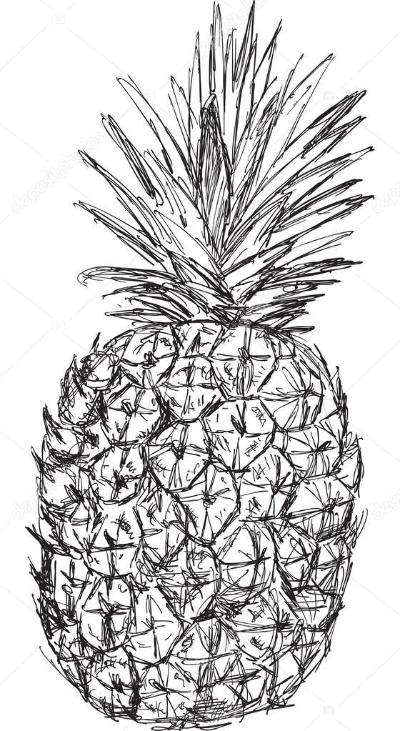 эскиз ананаса 001