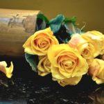 27 ноября День расставания (22 картинки)