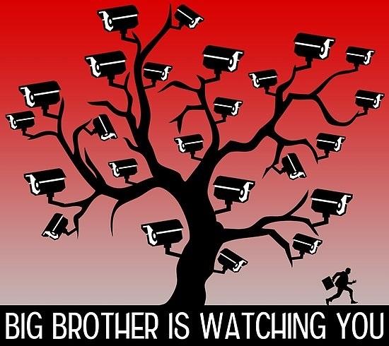 art big brother 009