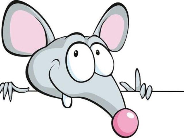 Красивые рисунки крысы для срисовки (13)