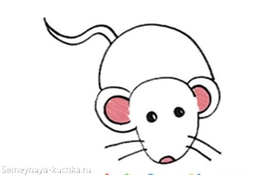 Красивые рисунки крысы для срисовки (16)