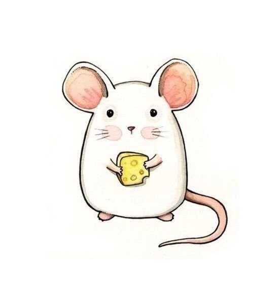 Красивые рисунки крысы для срисовки (3)