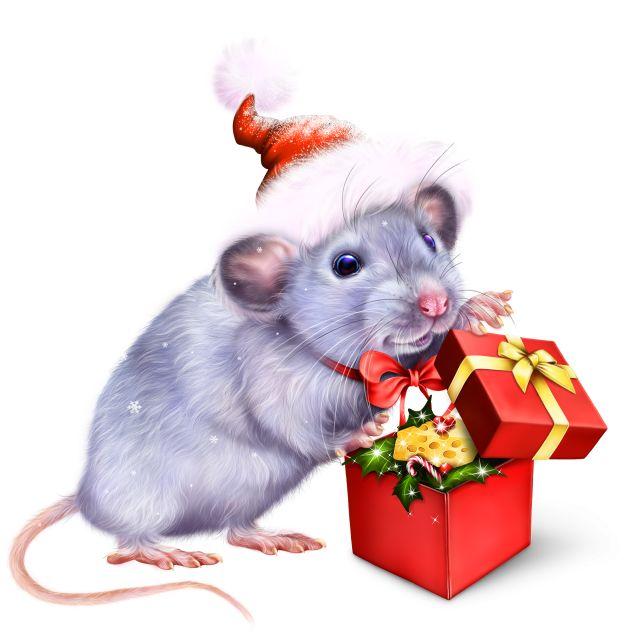 Красивые рисунки крысы для срисовки (7)