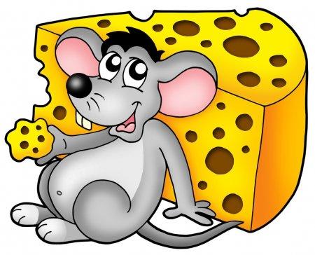 Красивые рисунки крысы для срисовки (8)