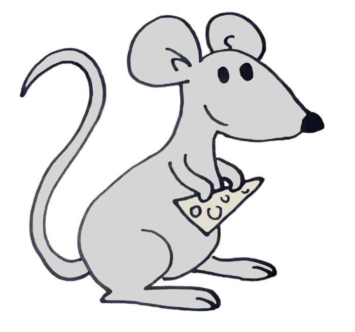 Красивые рисунки крысы для срисовки (9)