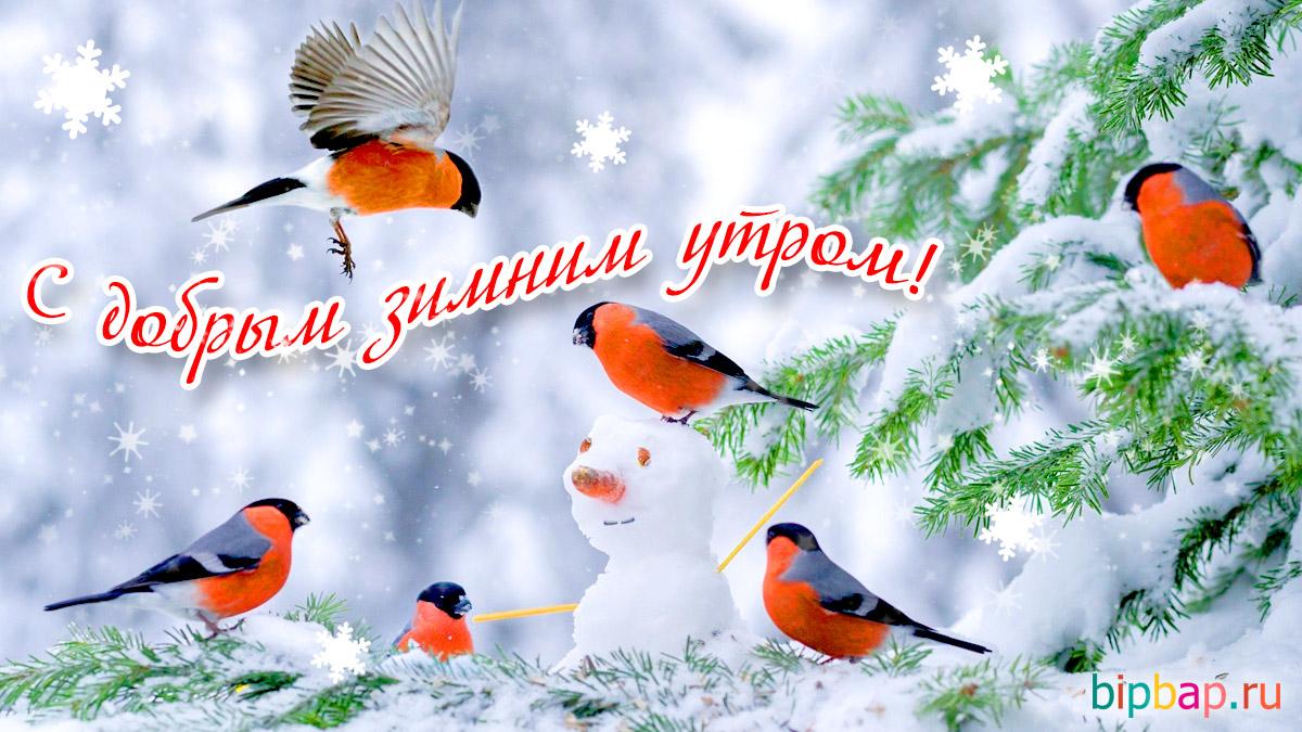 Лучшие картинки доброе утро зимнее утро (3)