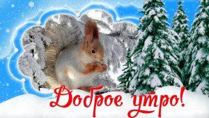 Лучшие картинки доброе утро зимнее утро (4)