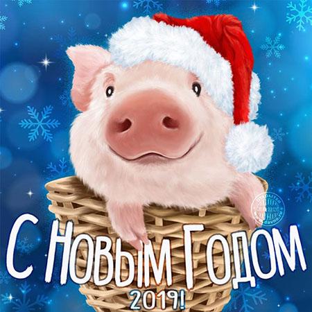 Поздравляю с новым годом   открытки прикольные (13)