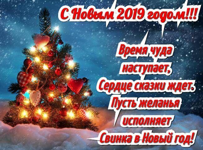 Поздравляю с новым годом   открытки прикольные (15)