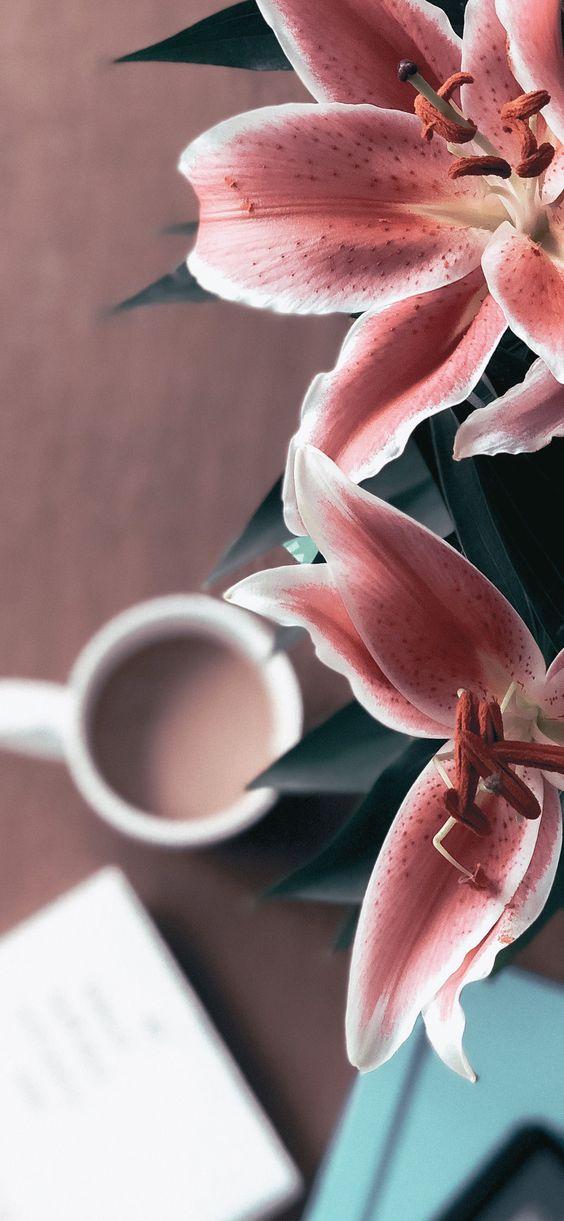 Как сделать утро идеальным (2)