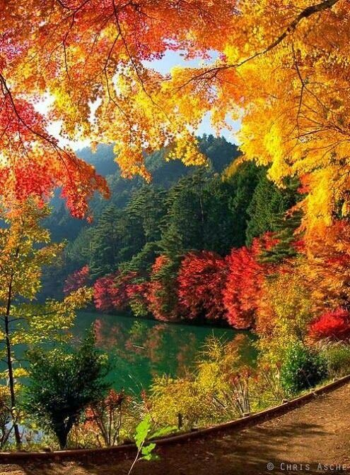 Фото рисунки осенний пейзаж (1)