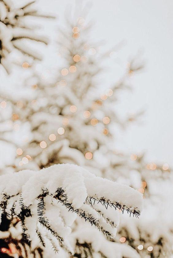 Зима и февраль лучшие обои на телефон   подборка (19)